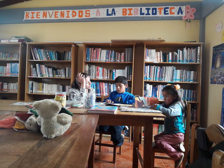 Animer Des Ateliers Lectures En Bibliothéque En Bolivie