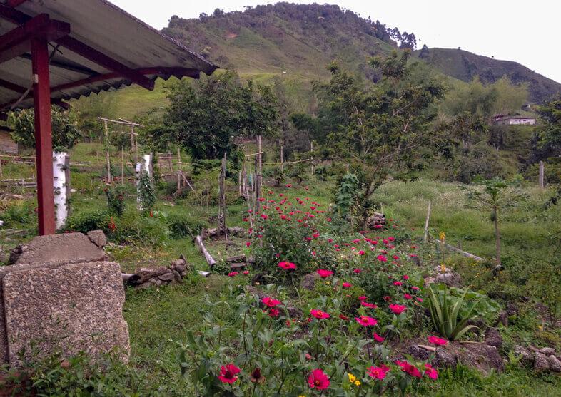 Ecole De Tierra Dulce En Colombie
