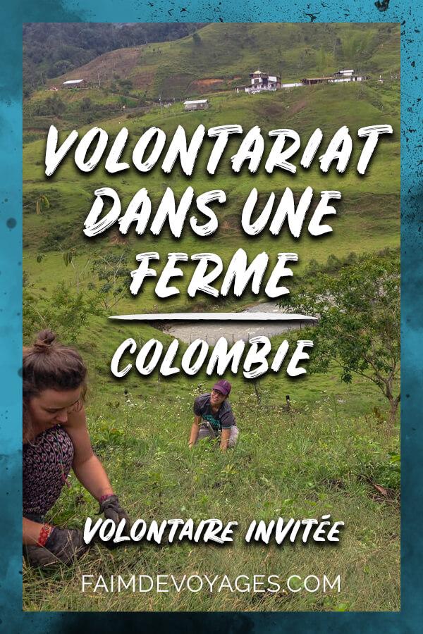 Vivre Un Volontariat Dans Une Ferme En Colombie Dans Les Plantations De Café