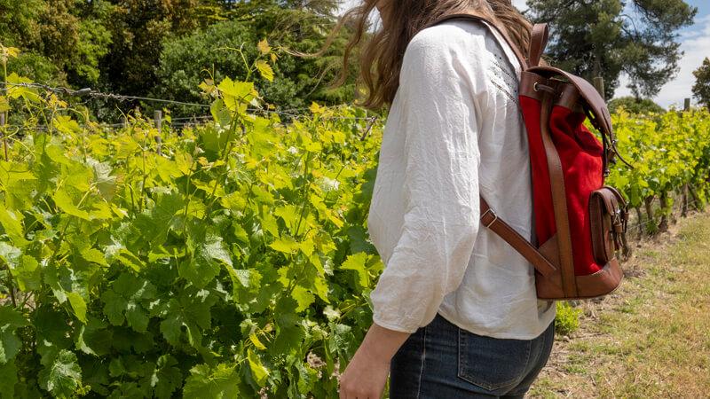 Sac à Dos Pachamama Vue De Côté Dans Les Vignes
